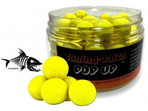 Tuning Baits plovoucí boilies Pop Up Scopex & Oliheň 50g
