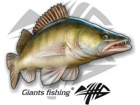 Nálepka malá Giants Fishing Candát