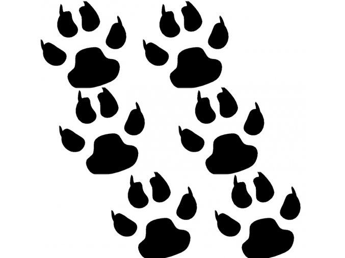 psí packa černá