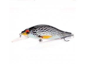 pstruh rybyčka