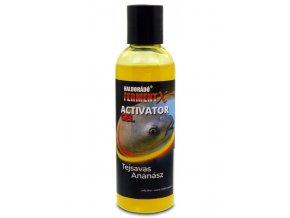 Haldorado FermentX Activator Gel Syrovatka Ananas 600x800