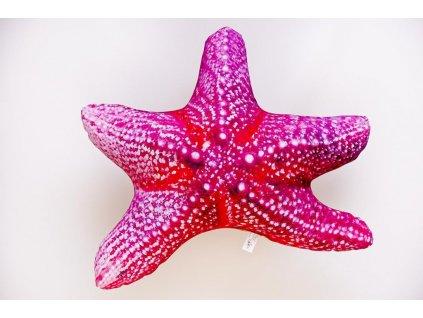 Hvězdice - 50 cm polštář