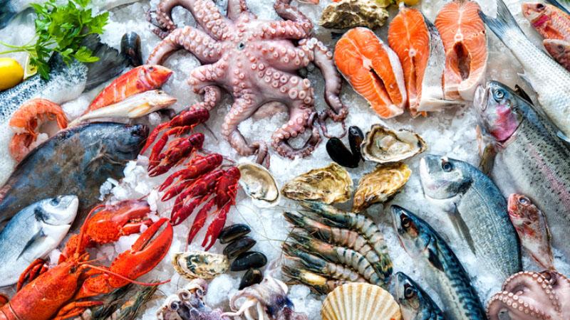 Logo rybygil