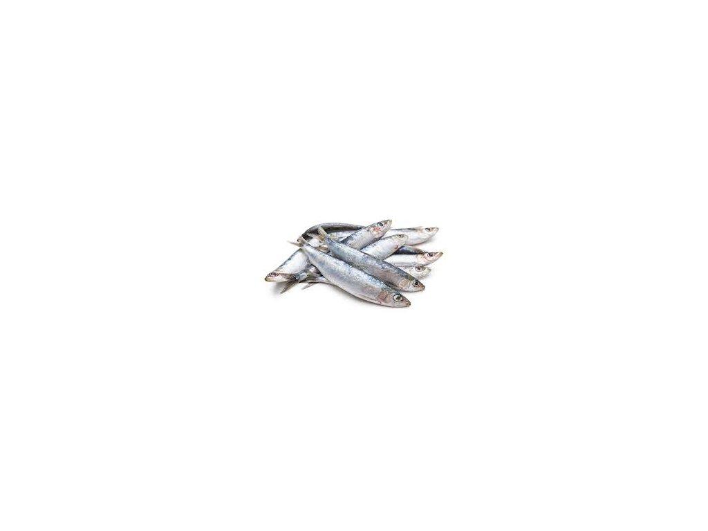 sardinky celé