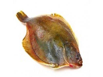 Kambala (váhove možnosti 1000 g, čistenie ryby nechcem rybu vyčistiť)