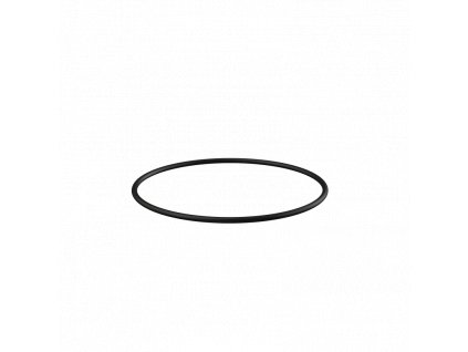 Alcaplast Těsnění nerezové příruby APV0006