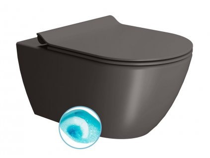 GSI PURA závesná WC misa, Swirlflush, 55x36 cm, bistro dual-mat 881516