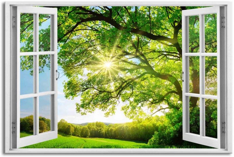162038_3d-obraz-okno-obrovsky-strom