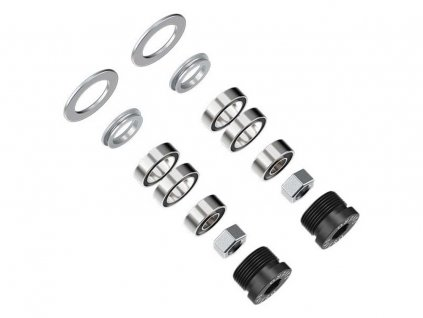 assioma bearings