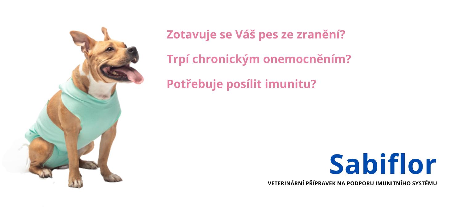 SABIFLOR podpora imunity