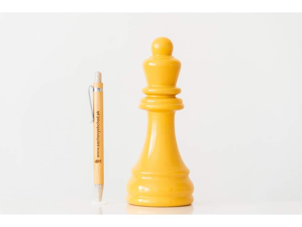 Šachové ceny a trofeje