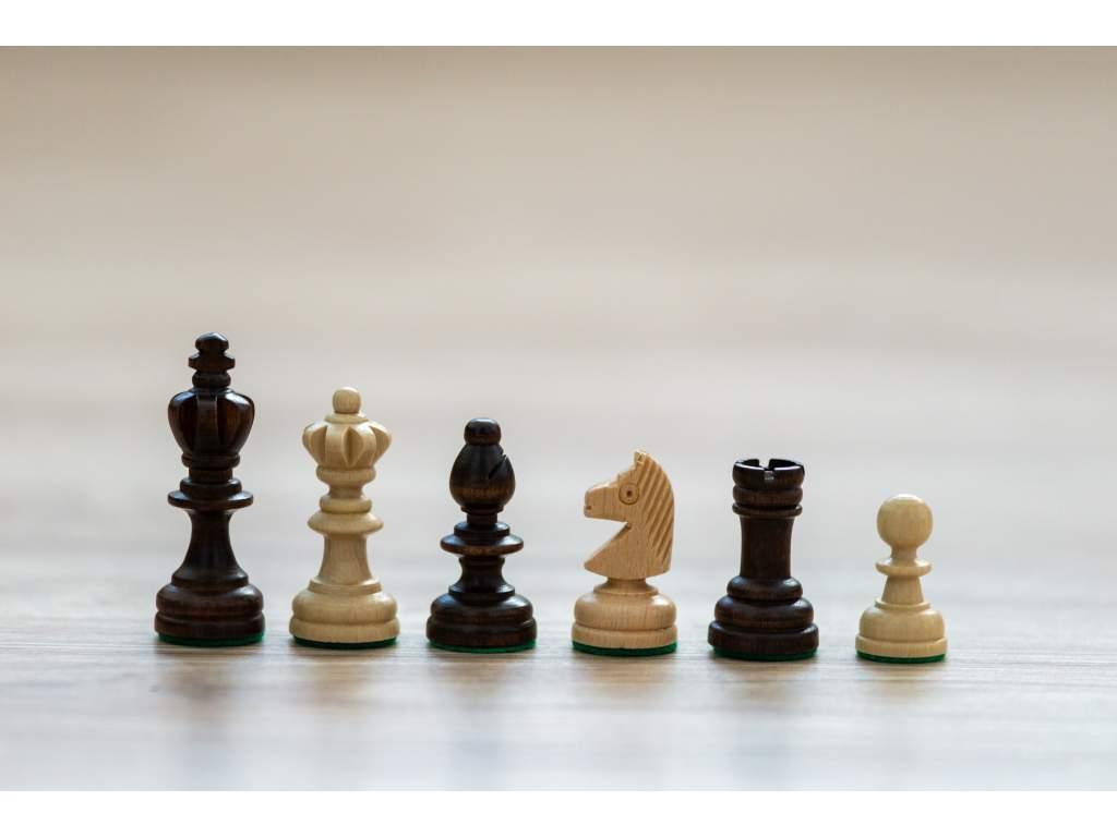 Drevené šachové figúrky Lúčina; náhradné