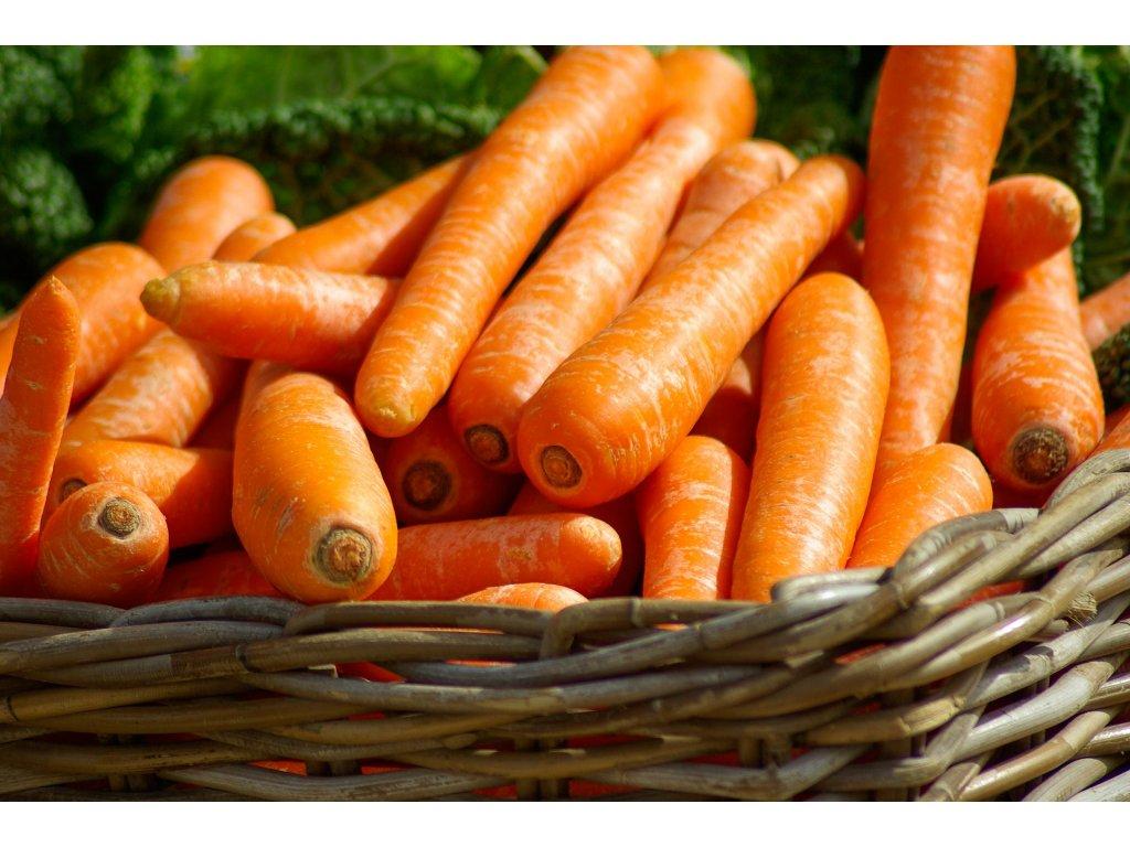 carrots 673184 1920