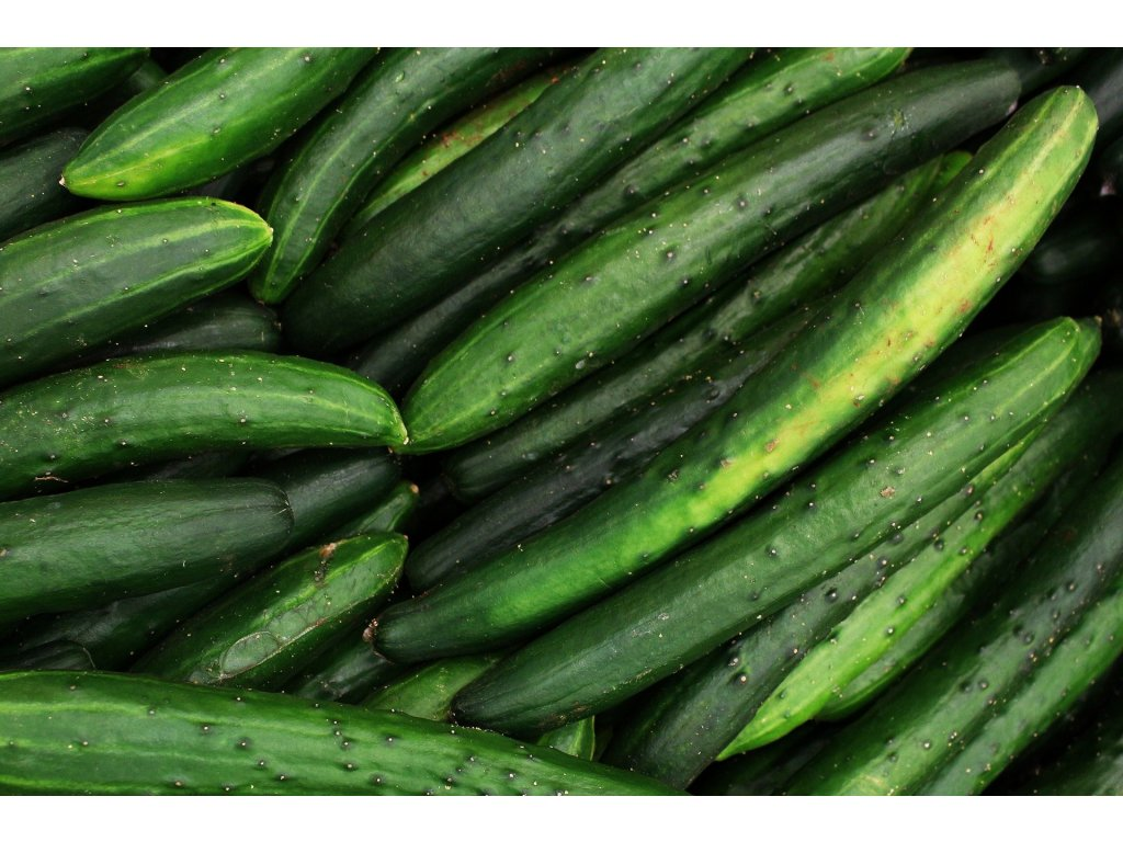 cucumber 5318945 1920