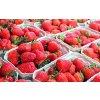 strawberries 1350482 1920
