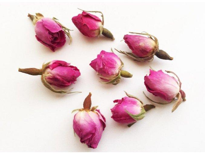 Růžové květy1