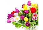 Svěží - květinová vůně
