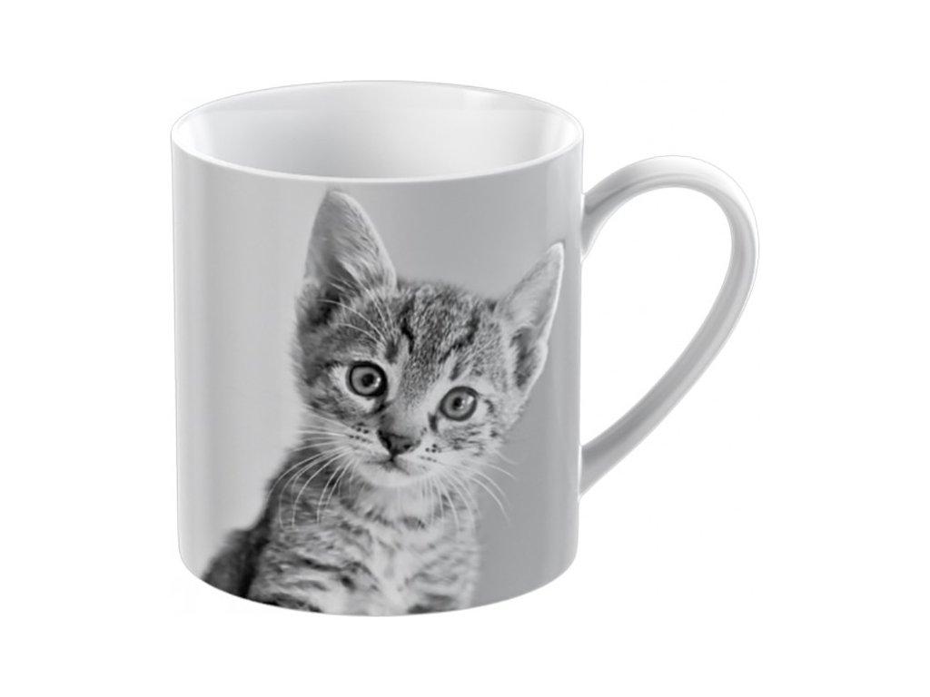 kitten small can mug