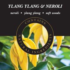 Ashleigh & Burwood Náplň do katalytické lampy YLANG YLANG & NEROLI (ylang ylang a neroli), 500 ml