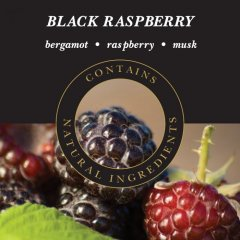 Ashleigh & Burwood Náplň do katalytické lampy BLACK RASPBERRY (ostružina), 250 ml