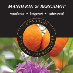 Ashleigh & Burwood Náplň do katalytické lampy MANDARIN & BERGAMOT (mandarinka a bergamot), 500 ml