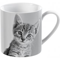 Creative Tops Porcelánový hrnek Kitten, 300 ml