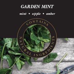 Ashleigh & Burwood Difuzér GARDEN MINT (zahradní máta) THE SCENTED HOME, 200 ml