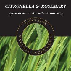 Ashleigh & Burwood Náplň do katalytické lampy CITRONELLA & ROSEMARY (citronová tráva s rozmarýnem) 500 ml