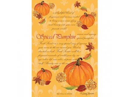 wb envelope sachet spiced pumpkin fs200220