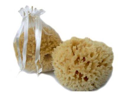 Caribbean Sun Premium Přírodní mořská houba pro děti 8-9 cm