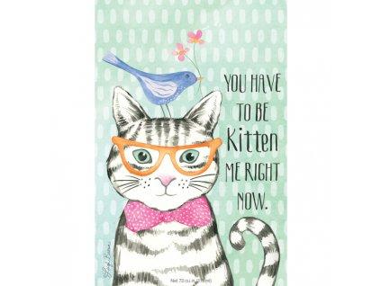 kitten sachet