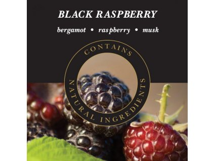 Ashleigh & Burwood Náplň do katalytické lampy BLACK RASPBERRY (ostružina), 500 ml