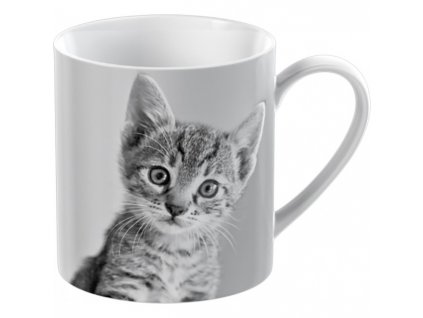 kitten small can mug