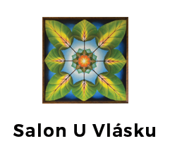 Salon U Vlásku