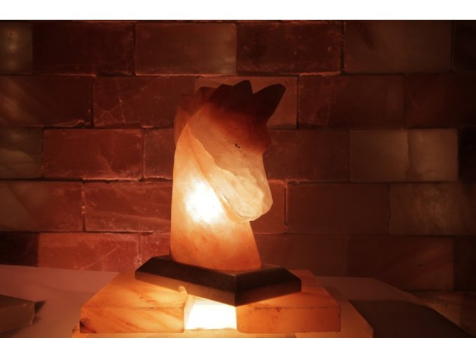 Solná elektrická lampa Kůň