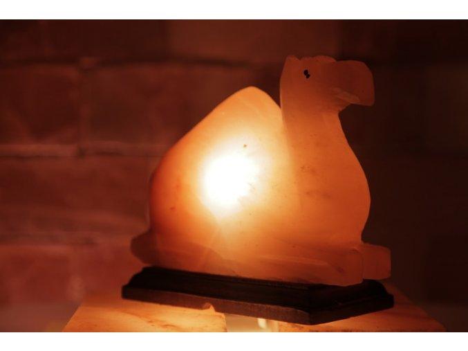 Solná elektrická lampa Velbloud