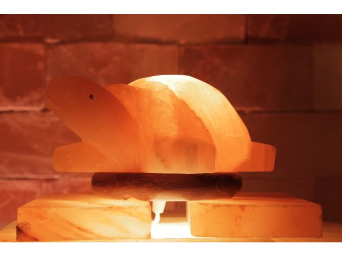 Solná elektrická lampa Želva