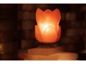 Solná elektrická lampa Lotosový květ