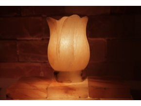 Solná elektrická lampa Tulipán