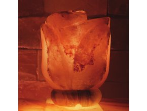 Solná lampa Růže