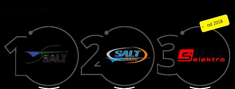 vyvoj loga salt elektro
