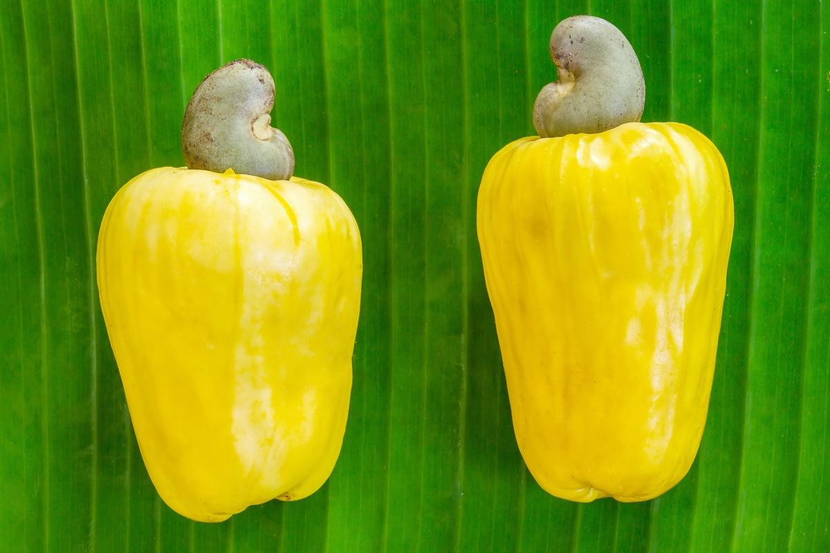 Čokoládová novinka: Kešu nugát s ananásom