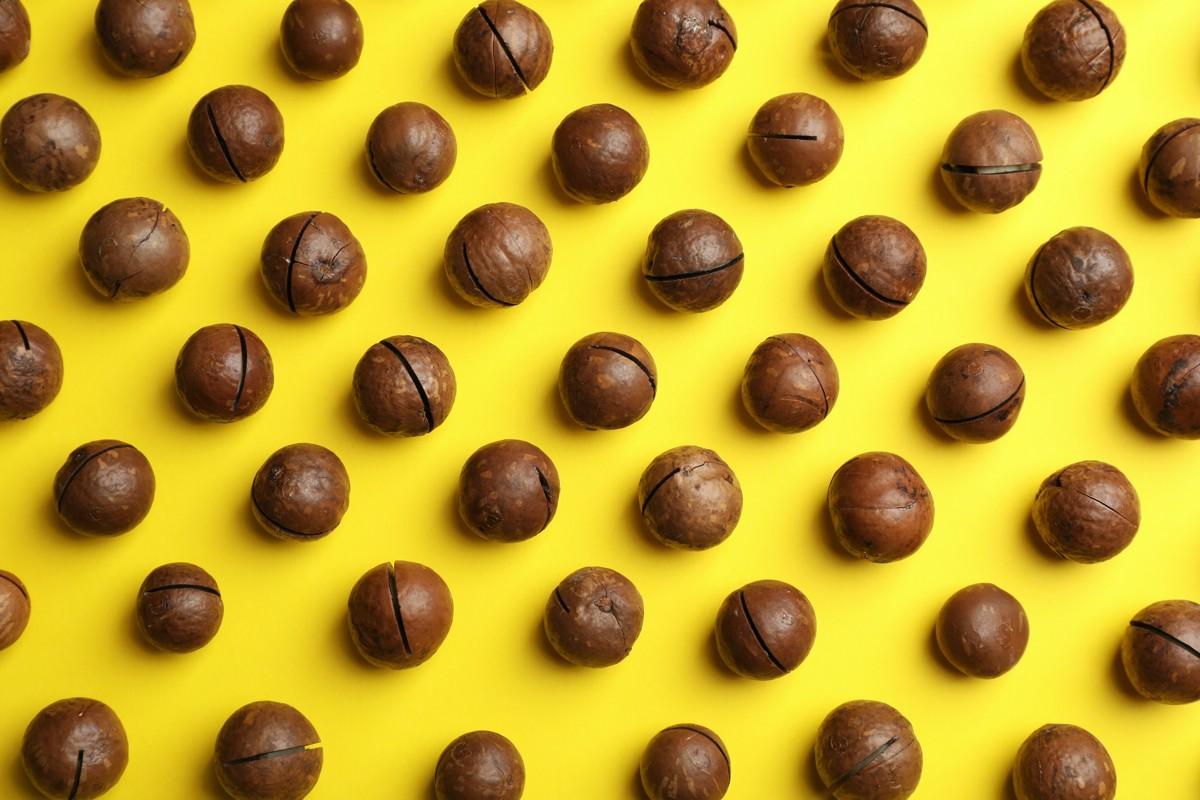 Čokoláda Zotter G.Nuss z našich férových makadamov
