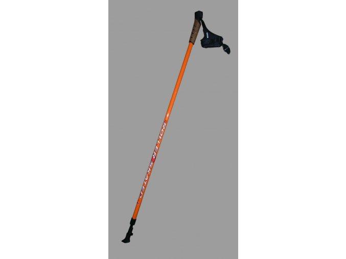 HAVEN Roller Skater - teleskopické hůlky pro in-line
