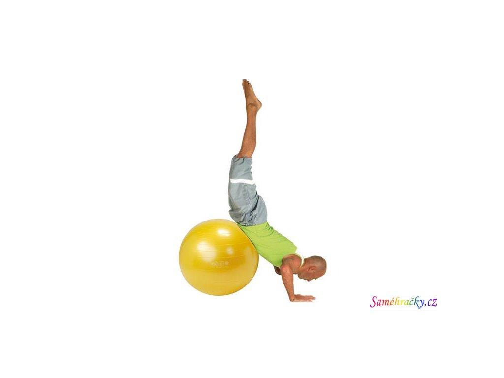 Gymnic Plus 5