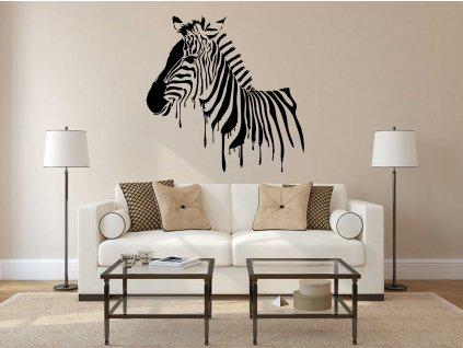 Zebra (černá)