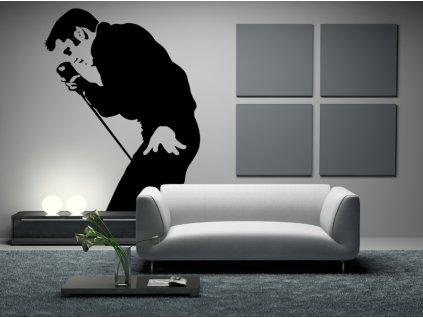 Elvis Presley - král rock'n'rollu - samolepky na zeď | SAMOLEPKYnaZED.cz (barva černá)