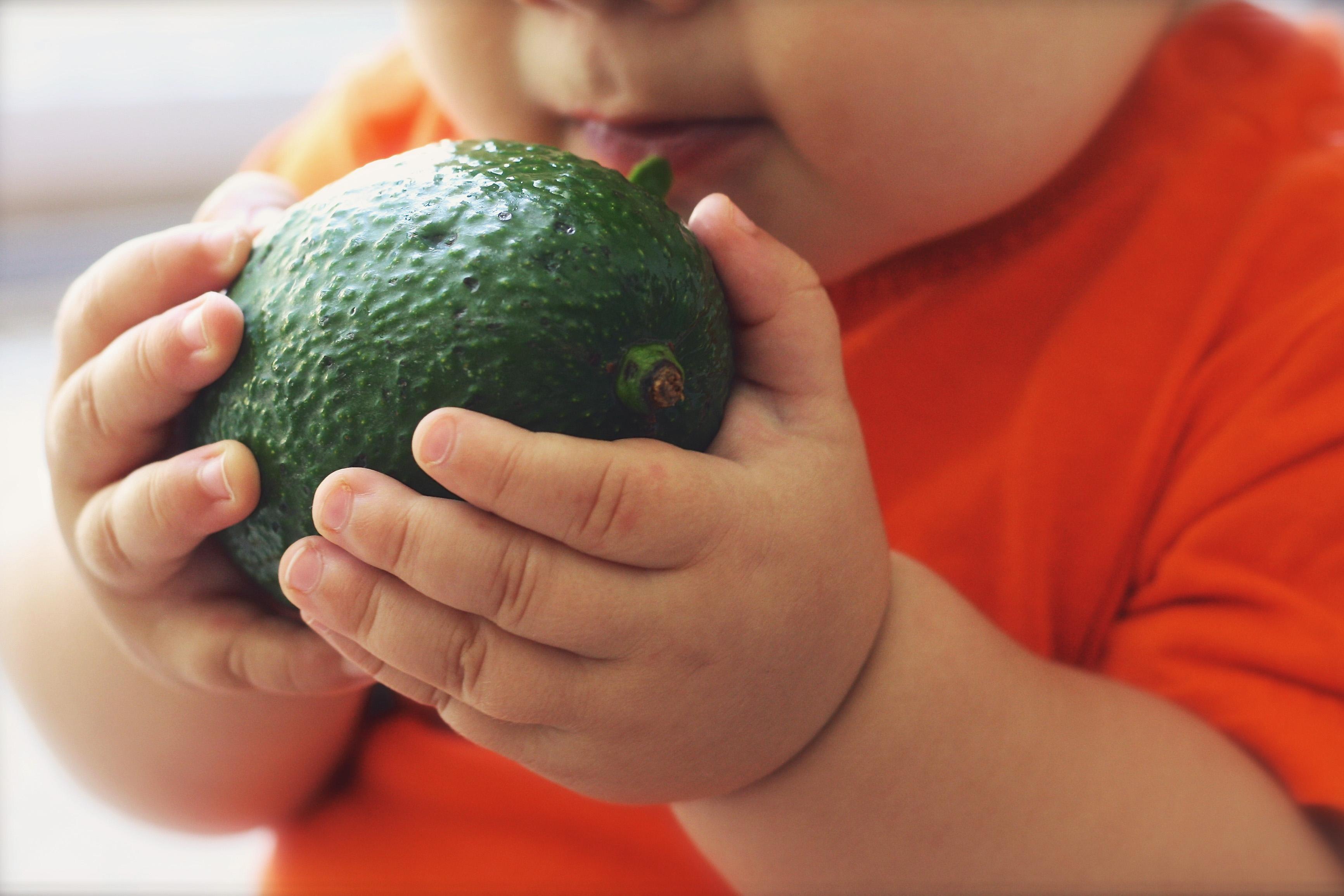 avocado-kid
