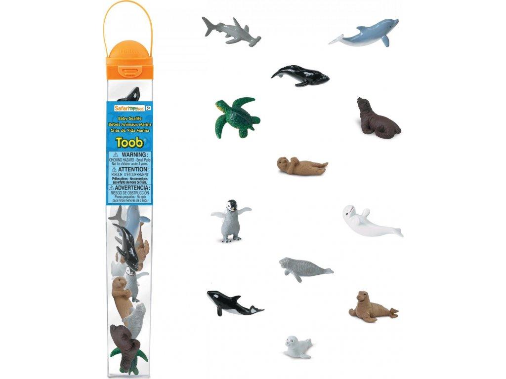 Tuba - mláďata mořských živočichů