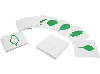 Karty - tvary listů
